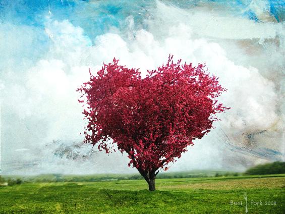 albero-cuore2